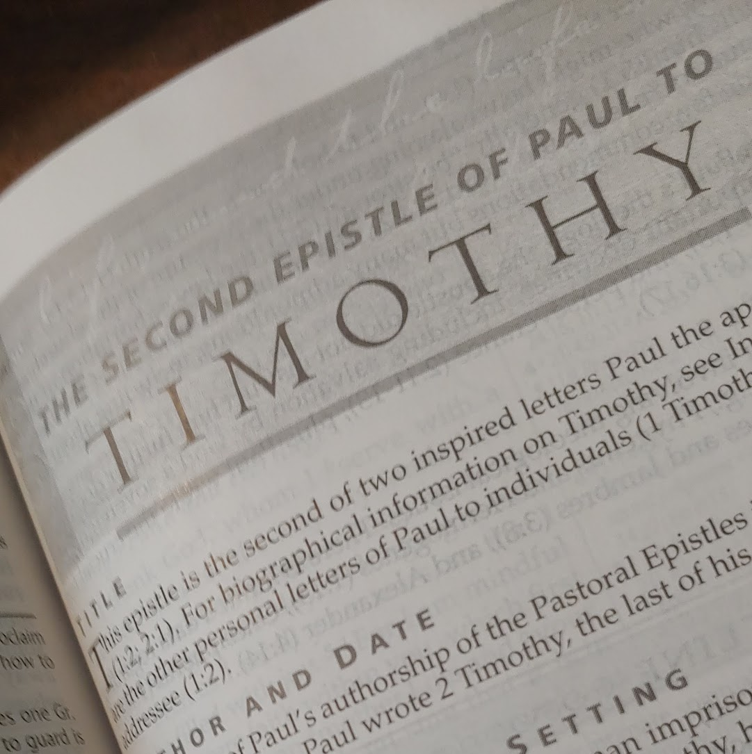 Examples of essay written for pastoral epistle